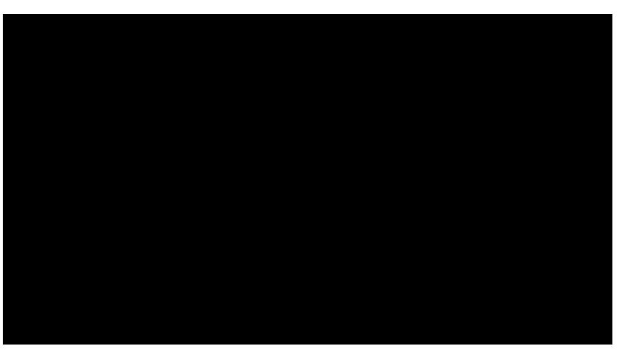 logo-paolo-parisi