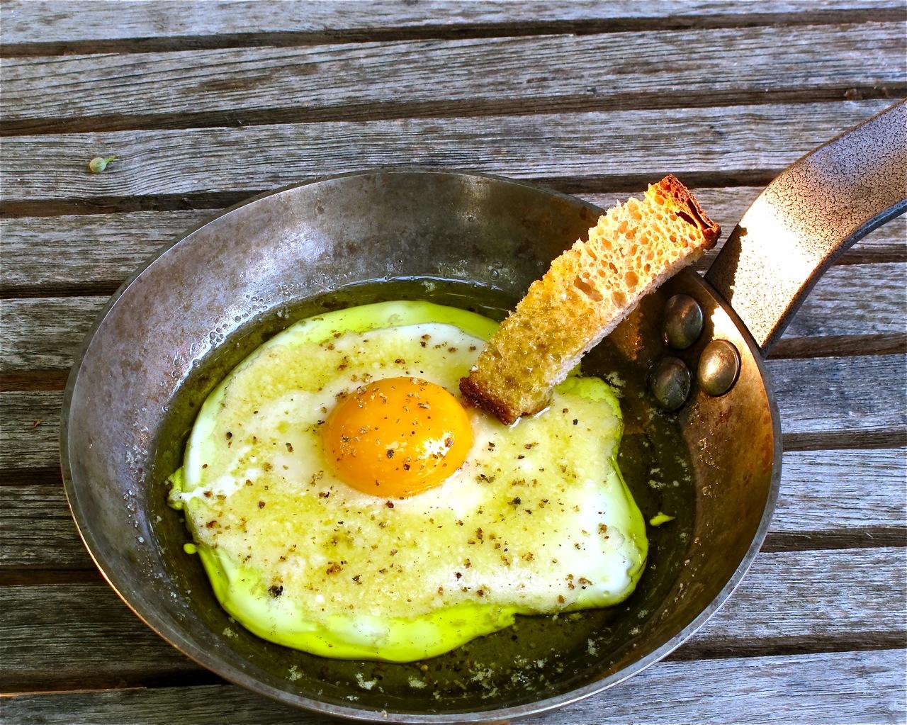 uovo di gallina livornese - Paolo Parisi 7